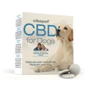 CBD für Tiere